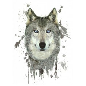 Temporary Tattoo GREY WOLF