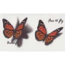 BUTTERFLIES 4 Temporary Tattoo